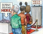 Stupid Voters