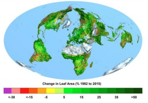 Change in Leaf Area 1982 to 2015