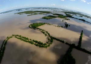 Mississippi's Batture Still Flooded