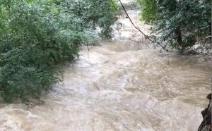 Belhaven Creek